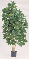 Kunstpflanze - Schefflera reflexa kingsize