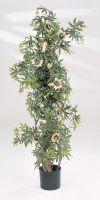Kunstpflanze - Passiflora caerulea (Passionsblume)