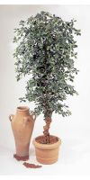 Kunstpflanze - Black Olive