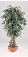 Artificial- Ficus  longfolia root tree